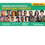 Emerging Investigators in Bioinorganic Chemistry: 2014-2015